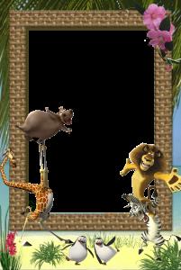 Фоторамки для фотографий. Веселые герои мультфильма Мадагаскар - бегемотиха, вечно болеющий жираф, лев, смешной зебра, озорники пингвины.