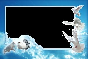 Фоторамка с белыми голубями на фоне синего неба. Бесплатные фоторамки для фотошопа. Вставить фото в рамку 191