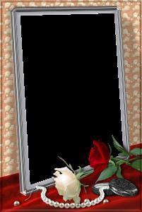 Белая и красная розы, и нить жемчуга в романтической фоторамке. Фоторамки для фотошопа. Бесплатно рамки для фото 196
