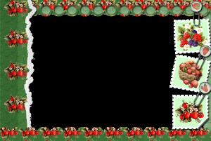 Фоторамка с ягодами на зеленом фоне. Околдует летним солнцем и теплом. Зимой напомнит, как здорово вы проводили отпуск или каникулы.