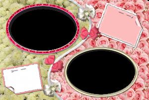 Белые и розовые розы. Овальные фоторамки выделят на их фоне ваши фотографии, а в уголочках на булавочке будет приколот нежный комментарий.