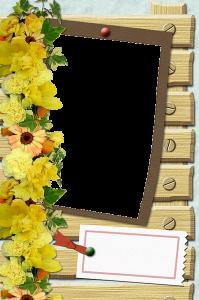 Желтые цветы в обрамлении отличной рамки для фотошопа.