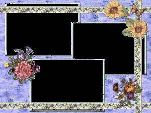 Летняя рамочка на три фотографии. Пионы и вьюнки, красавцы подсолнухи, яблоки и сливы, а вокруг летают бабочки. Самые прикольные фоторамки для фото на все вкусы выбирайте сколько хотите.