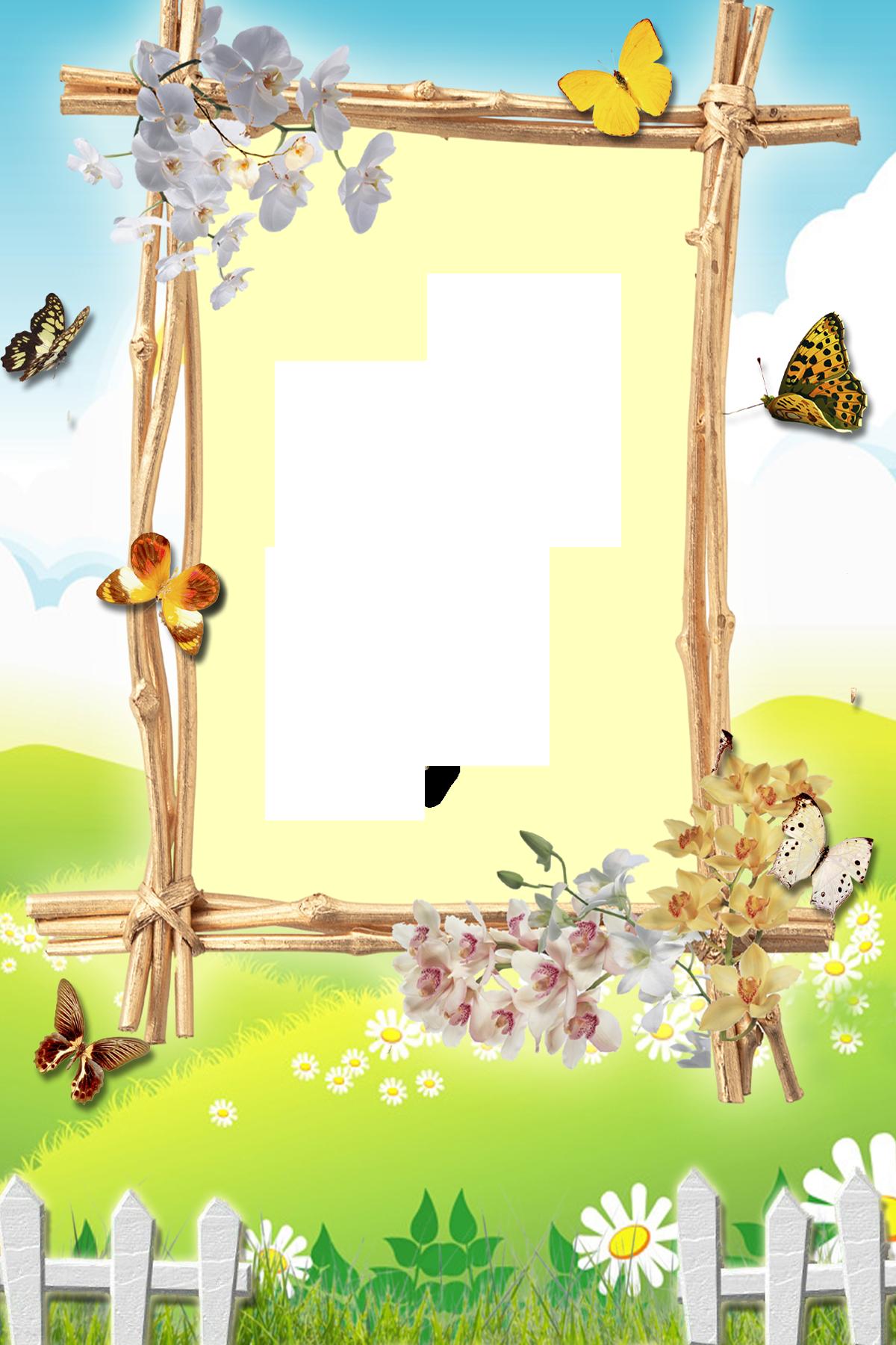 Фото бабочки для детей