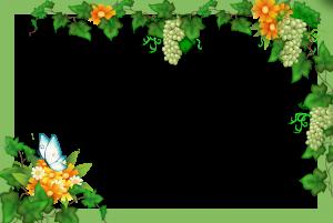 Виноградные гроздья освежат вашу фотографию. Нежная бабочка на цветах придаст летнего задора. Очень красивые рамочки - это залог великолепного настроения.