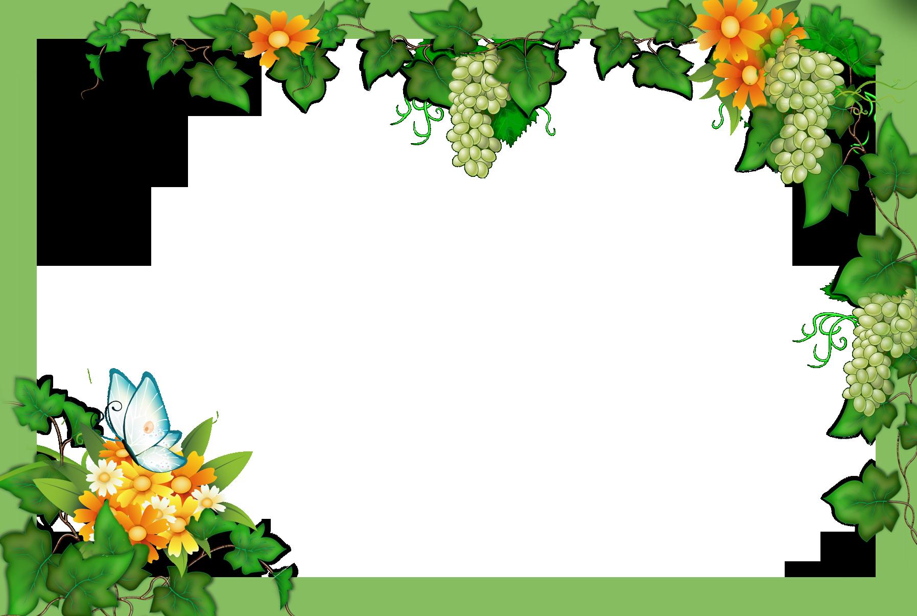 Цветы с бабочками фото