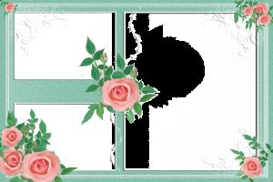 Цветочная фоторамка с розами на три фотографии.