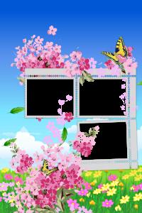 Рамочка лето. Розовые цветы и красивые бабочки напомнят о прекрасных летних днях и станут великолепным обрамлением для ваших кадров.