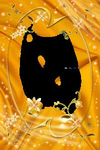 Роскошь золота и блеска, искрящиеся бусинки и танцующие цветы. Фоторамки photoshop. Скачать рамки бесплатно.