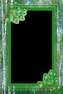 Рамка для фотошоп. Летом в лесу. Запах леса и берез будет передаваться вам сквозь время и будет вдвойне приятнее вспомнить летний отдых и прогулки.