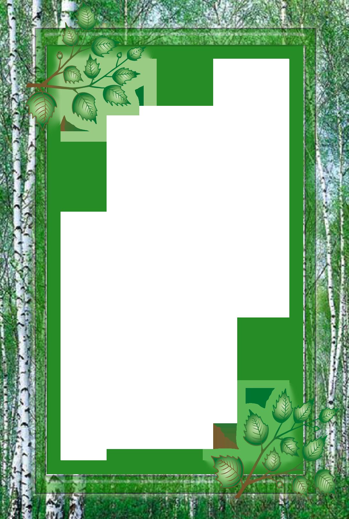 Отдых в лесу картинки