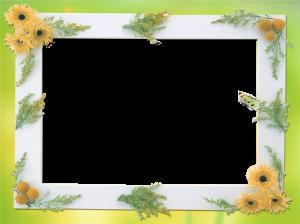 Фоторамки. Желтое и зеленое в удачном сочетании – уместная рамочка для летнего фото.