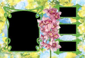 Фоторамки. Ветка орхидеи в окружении четырех рамок – замечательный вариант для фото школьных друзей.