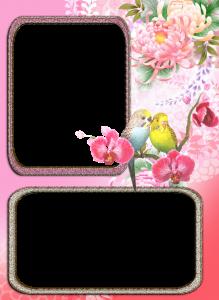 Фоторамки. Два прямоугольника, дополненные чудесными цветами, - места для снимков близких людей.
