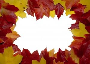 Красивые рамочки фотошоп разных форм, цветов и размеров 106