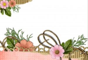 Красивые рамочки фотошоп разных форм, цветов и размеров 118