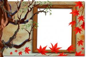 Красивые рамочки фотошоп разных форм, цветов и размеров 119