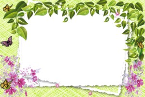 Уделите внимание рамкам для фотошопа, ведь они такие красивые! Разные красивые рамки для ваших фото альбомов и открыток 160