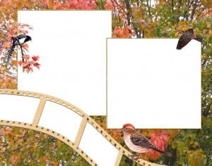 Самые волшебные бесплатные рамочки для фотошоп без регистрации 169