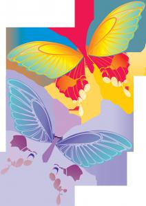 Клипарт фото на белом фоне - яркие разноцветные бабочки