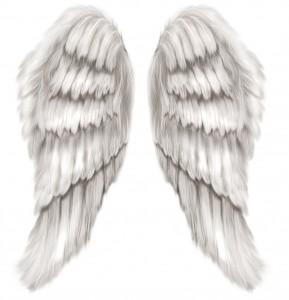 Крылья ангела можно использовать в коллажах на тему фэнтези.