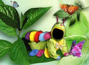 Детские шаблоны для фотошопа - 164. Маленькая гусеница ползёт по листьям в компании бабочек.