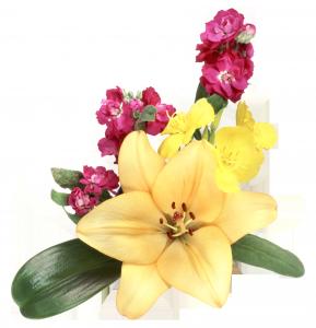 Шикарная желтая лилия украсит фотоснимок или картинку.