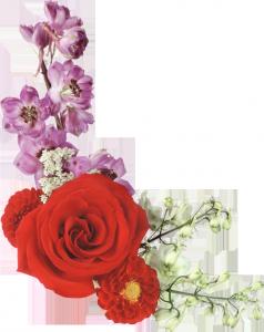 Клипарт с розами и загадочными фиолетовыми цветами.