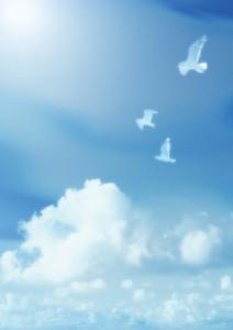 Фон для фотошопа - 326. Белоснежные голуби в чистом небе