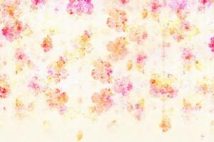 Фон для фотошопа - 105. Нежные цветочки на белом фоне.